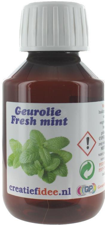Parfum / geurolie Fresh mint 100ml