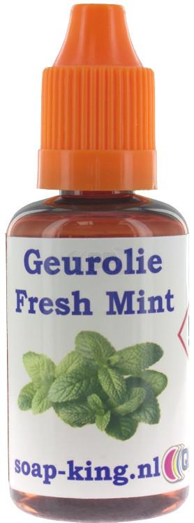 Parfum / geurolie Fresh mint 30ml