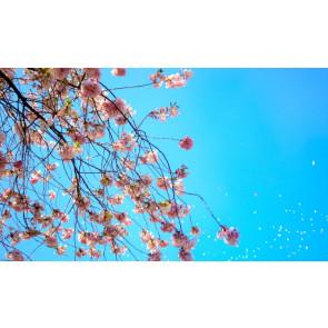 Parfum / geurolie Blue