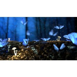 Parfum / geurolie Fantasy