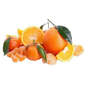 Parfum / geurolie Citrus vruchten (decoratie)