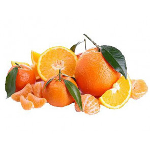 Parfum / geurolie Citrus vruchten 500ml (Decoratie)