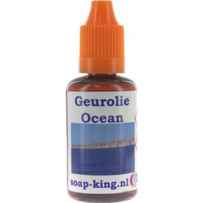 Parfum / geurolie Ocean (Decoratie)